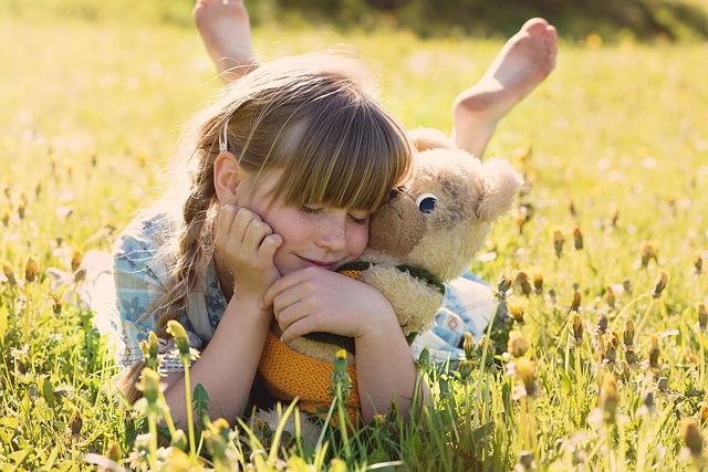 teddy bear photo